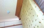 Квартира - стая Роси