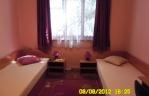 Квартира - стая Парадайс