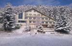 Хотел Бор