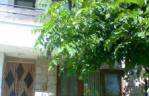 Квартира - стая Михневи